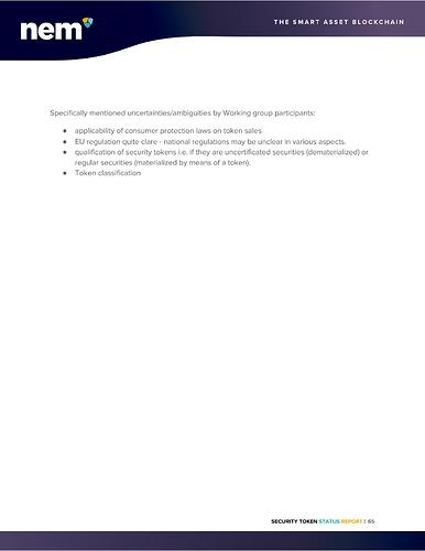 STO%20Status%20Report%20-%20NEM%20Foundation-page-066