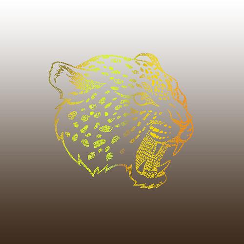 Jaguar06251sted
