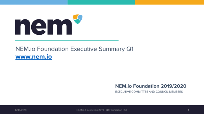 NEM Foundation Executive summary Q1 ROI